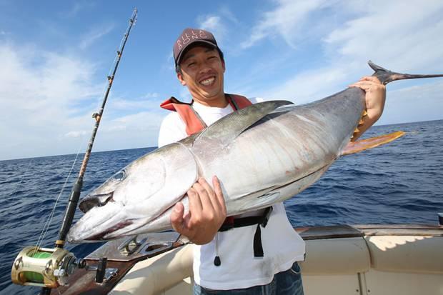 トローリング マグロ・カツオ・シイラの一本釣り