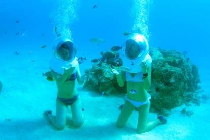 熱帯魚が泳ぐ海中で宝を探せ!<br> シーウォーク
