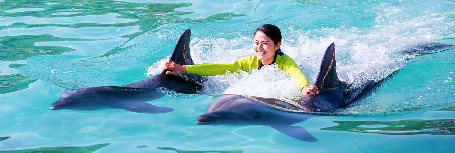 31e5338b Activities | Renaissance Okinawa Resort